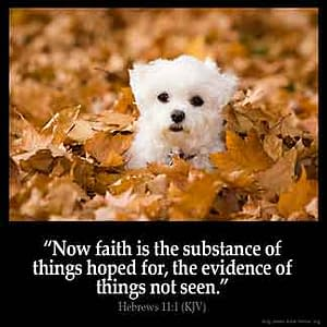 Abraham, Paul & God. A look at faith. A process, not an instant happening.