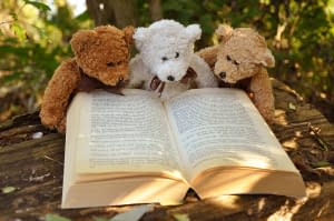 teddy bears reading - book quotes