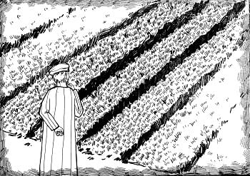Why did Jesus speak in parables? Image is of a field, but the parable is about something else.